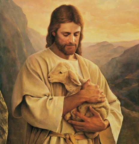 lost-lamb-art-lds-425852-wallpaper-e1474841510420