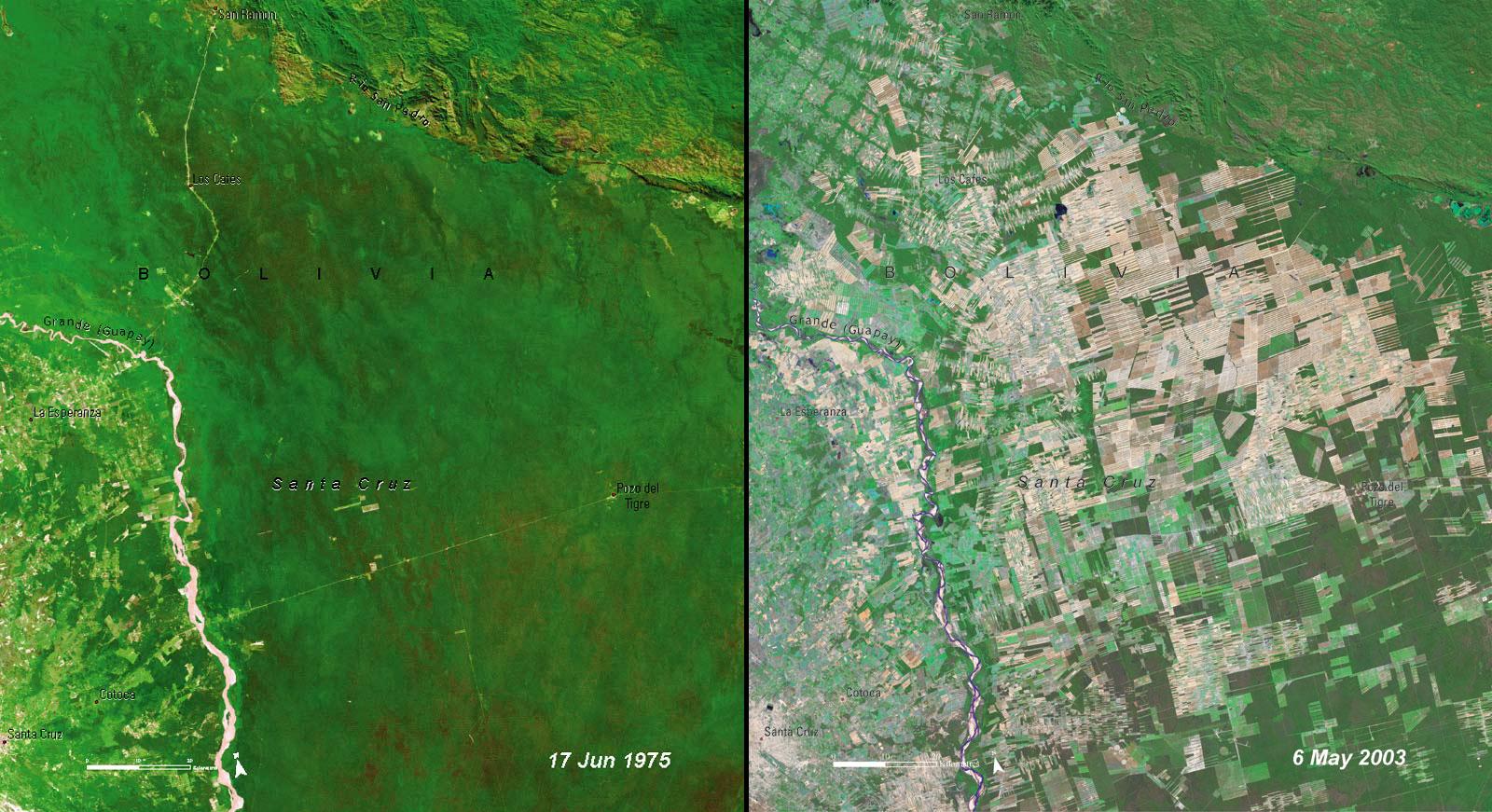 deforestation_bolivia1